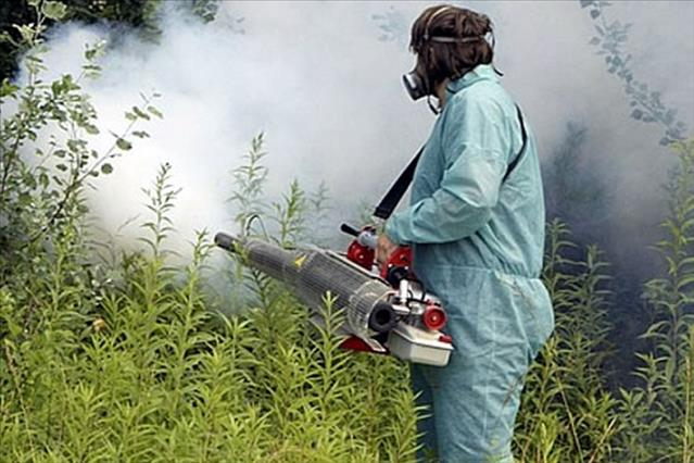 Peti larvicidni tretman komaraca